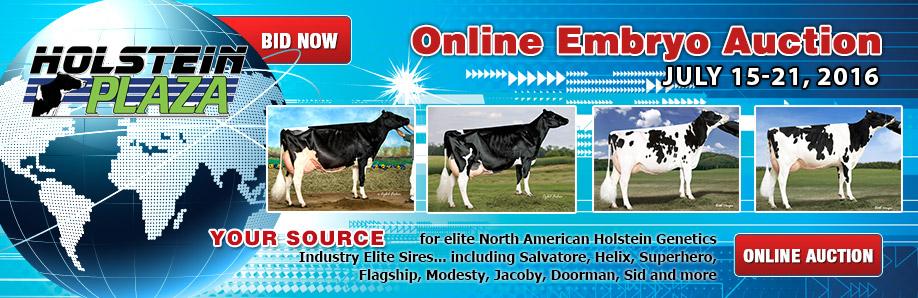 Online Embryo Auction: July 15-21, 2016