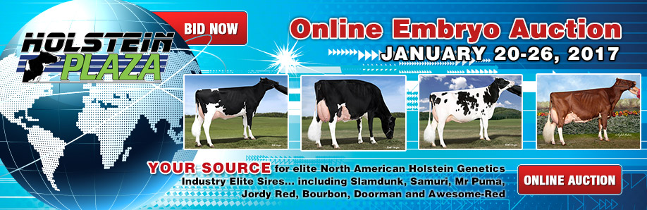 Online Embryo Auction: January 20-26, 2017