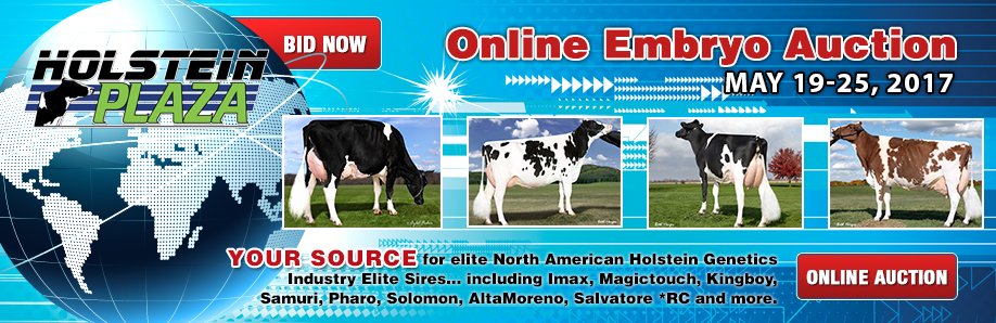 Online Embryo Auction: May 19-25, 2017