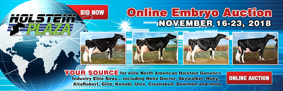 Online Embryo Auction: November 16-23, 2018