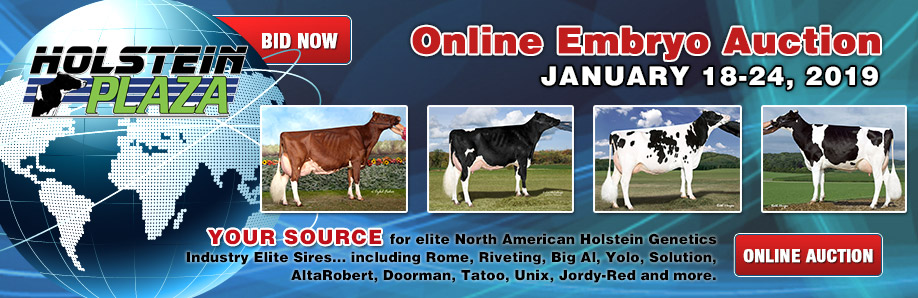 Online Embryo Auction: January 18-24, 2019