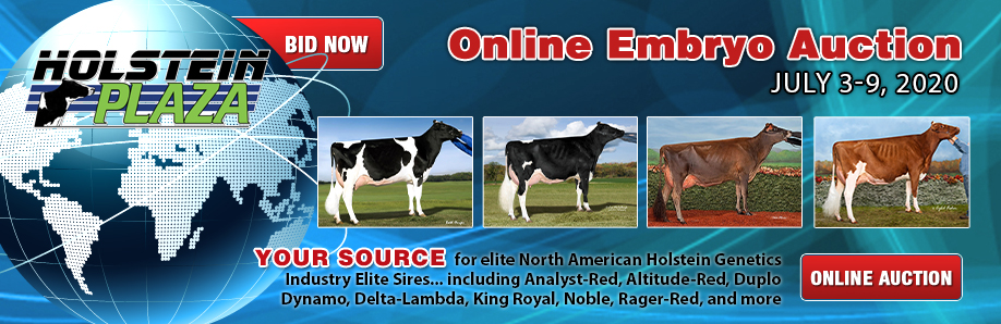 Holstein Plaza Online Embryo Auction: July 3-9, 2020