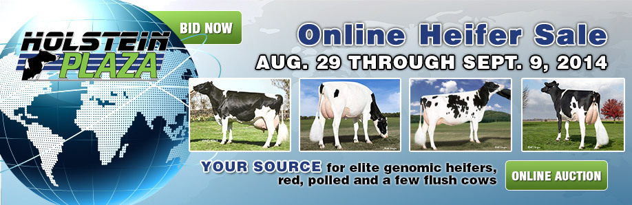 Online Heifer Sale: August 29-September 9, 2014